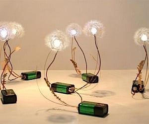 Dandelight: Light Up LED Dandelions