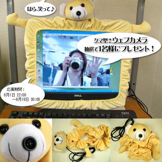 Worst Webcam Ever: the Stuffed Bear Cam