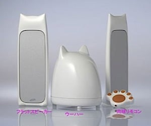 Cat Speakers: Play, Pause and Paws