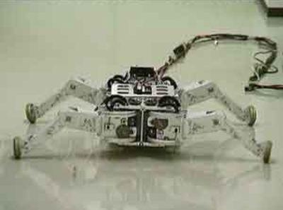 Roller-Walker Robot