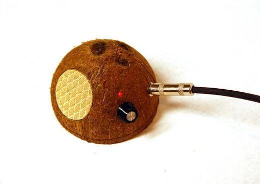 steve_lodefink_coconut_shell_amp