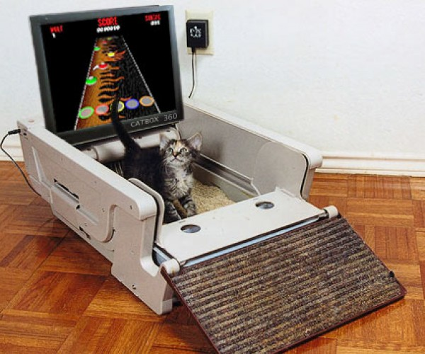 Scientists Develop Video Games for Cats