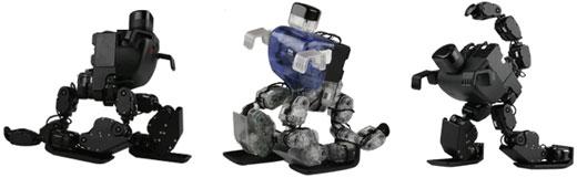 RoboBuilder DINO