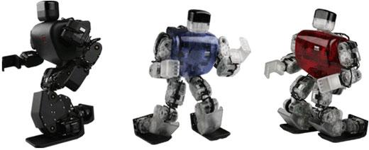 RoboBuilder HUNO