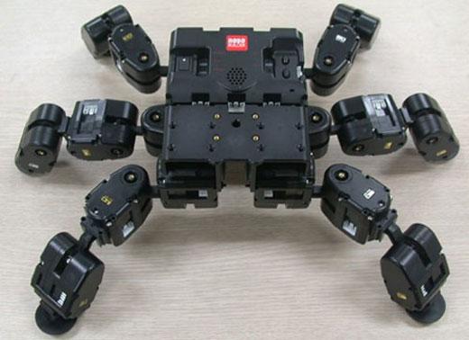 RoboBuilder Spider Robot