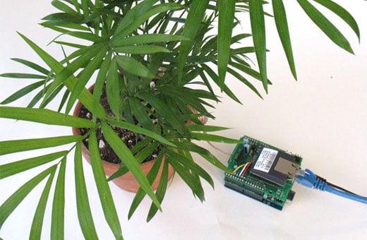 Adafruit Botanicalls Twitter Kit