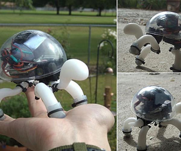 Crabfu Tortoise Robot Hits the Ground Crawling
