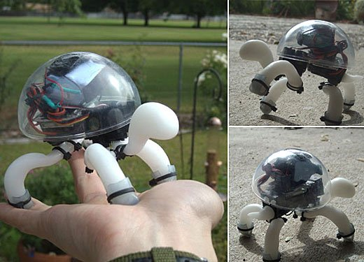 Crabfu Tortoise Robot