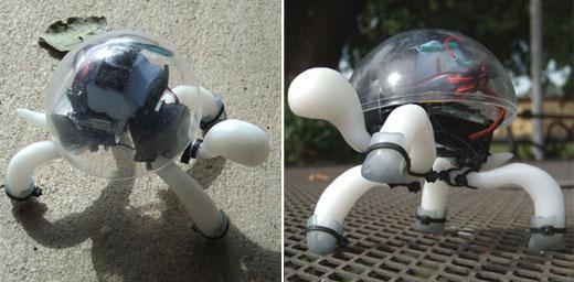 Crabfu Turtle Robot