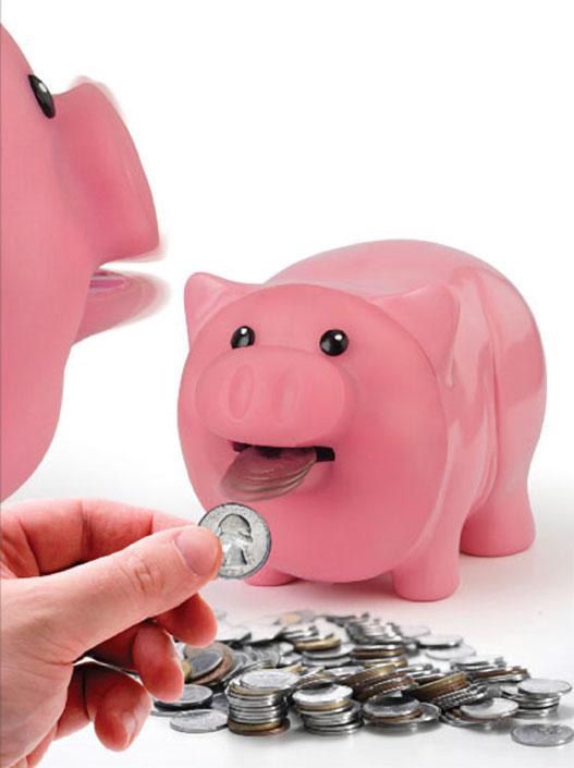 Hungry Piggy Bank