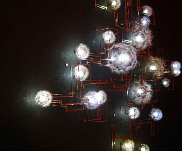 Fragile Future 2 LED Lamp Made From Dandelions