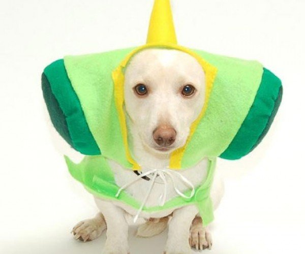 Katamari Prince Dog Costume Just in Time for Halloween