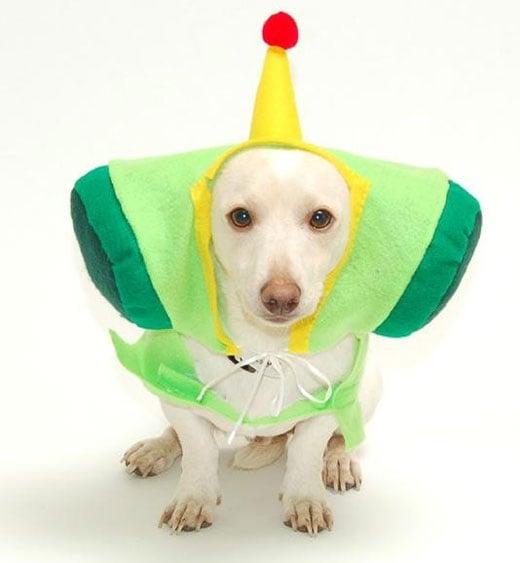 katamari dog costume