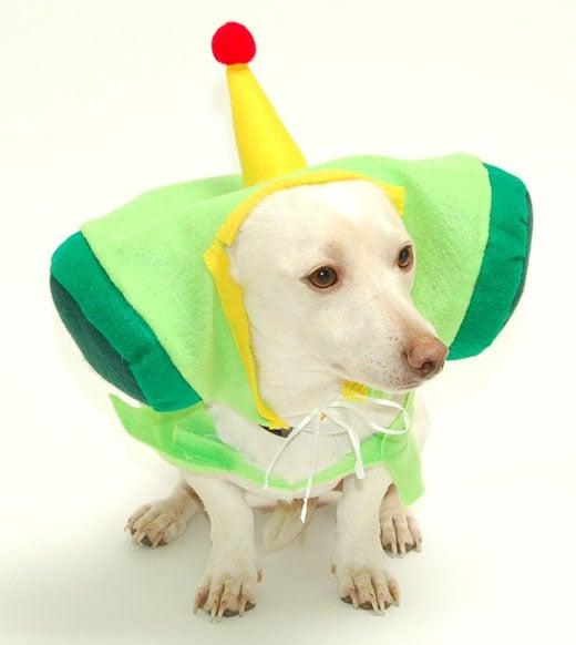 katamari dog costume 3