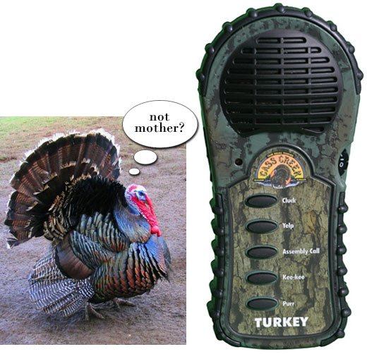electronic turkey call