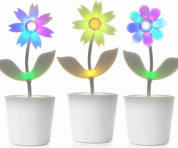 Flower Rock 2.0: Dancing Flowers Get a Makeover