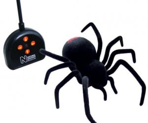 R/C Black Widow Spider Definitely Not for Arachnophobes