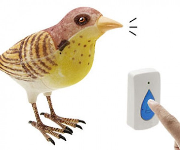 Wireless Bird Doorbells Sure to Get Your Cat'S Attention