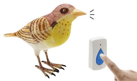 sparrow doorbell