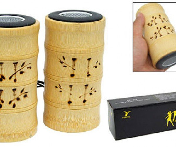 Bamboo Speakers Perfect for Pandas With Ipods