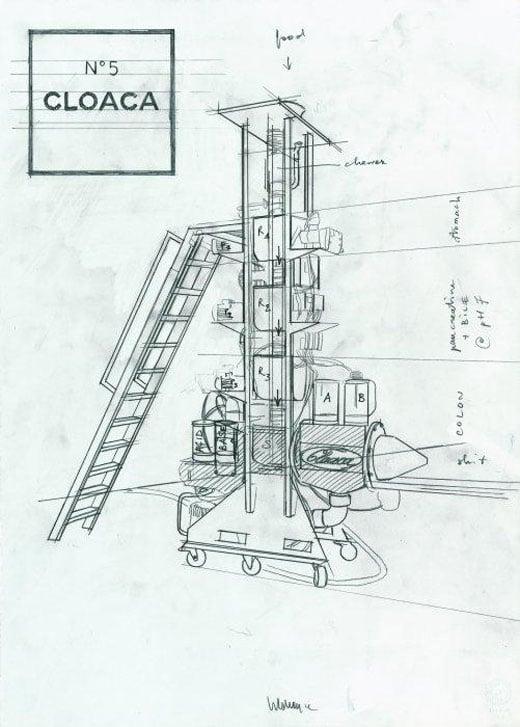 cloaca_no_5_sketch