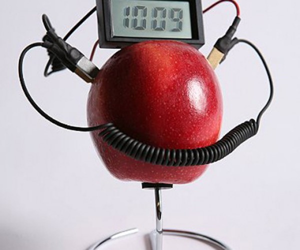 Be Geeky and Resourceful With the Fruit Powered Clock