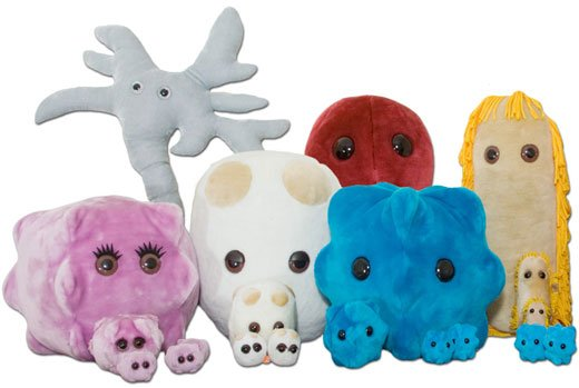 Giant microbes come in three sizes: original (5″-7″) that sells