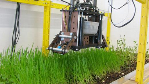 peter sands fast planting robot