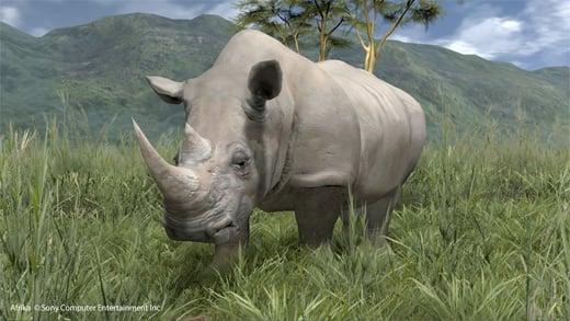 afrika ps3 safari photo natsume