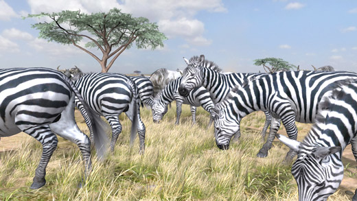afrika ps3 safari photo natsume