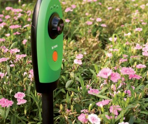 Brinno Gardenwatchcam: Time-Lapse Digital Garden Camera Shoots Video Slightly More Interesting Than Watching Paint Dry