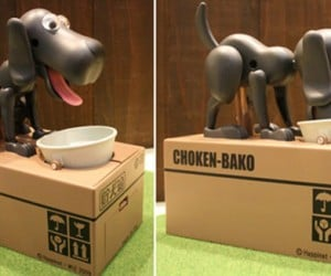 Choken Bako Dog Bank Will Eat Anything That'S Put on Its Bowl