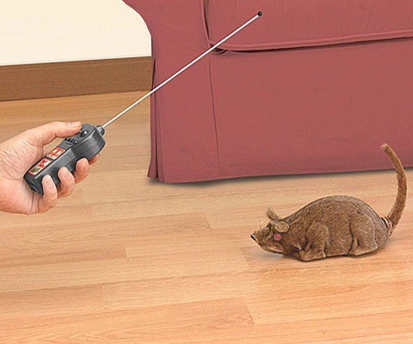 Remote-Controlled Rat: Because You Can Never have Enough Rodents