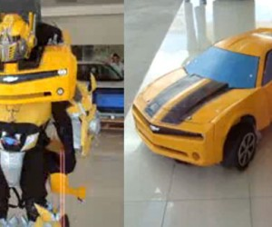 Bumblebee Costume Transforms… Into a Stationary Camaro