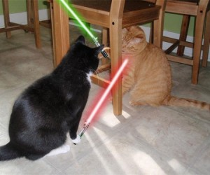 animals with lightsabers 2 300x250