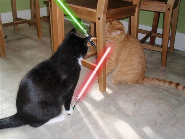 Animals_With_Lightsabers_2