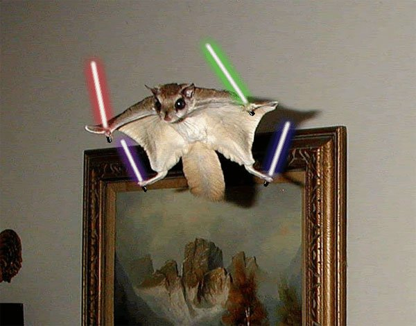 Animals_With_Lightsabers_5