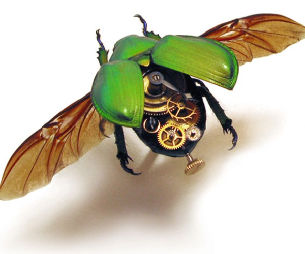 Insect_Lab_Steampunk_Beetle