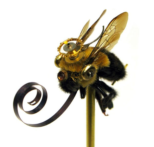 Insect_Lab_Steampunk_Bumblebee