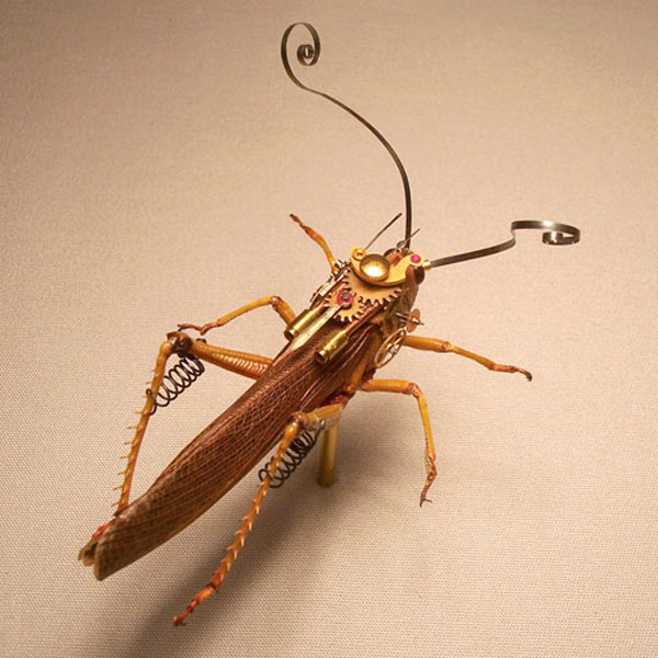 insect_lab_steampunk_grashopper