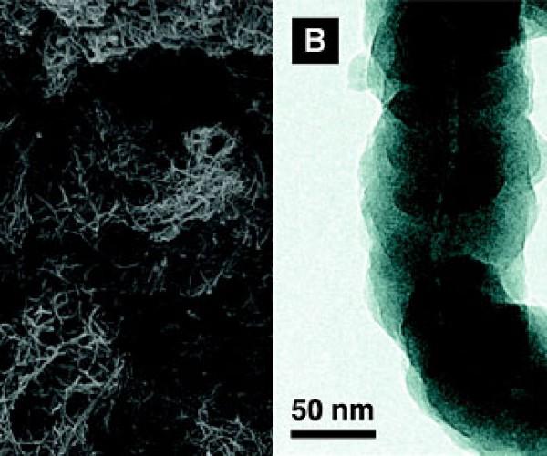 Green Algae-Based Batteries Show Tremendous Potential