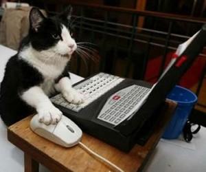 Technabob Seeks Gadget Writer