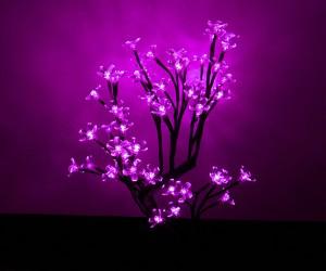 led flowers 4 300x250
