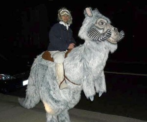 Star Wars Tauntaun Costume: Hoth or Bust!