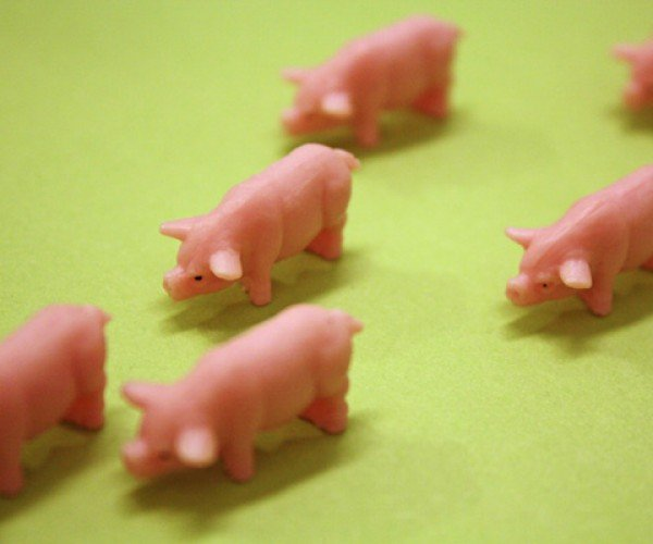 Lab Chops: Scientists Create Artificial Pork