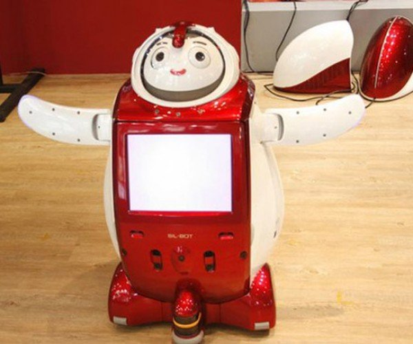 Sil-Bot: Grandma Gets a Crazy Looking Robot Companion!