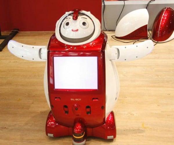 Sil-Bot: Grandma Gets a Crazy Looking Robot Companion!