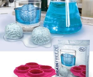 Brain Freeze Ice Cubes Let You Zombies Drink Your Braaaaains