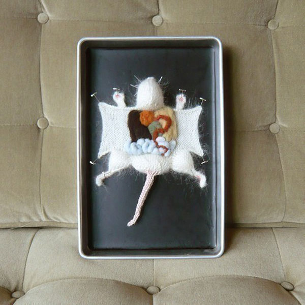 knitted dissected lab rat