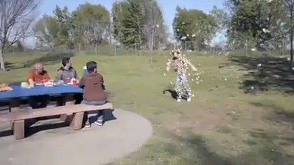 butterfly swarm attacks man